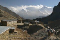 Thorong La pass base camp. 4900m, Annapurna circuit trek Royalty Free Stock Photography