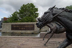 Thoroughbred Park. May 27, 2015. Lexington, Kenucky. USA - Sculptures of Thoroughbreds race to the finish line in Thoroughbred Park located in downtown Lexington Royalty Free Stock Photo