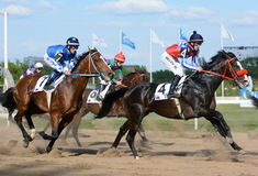 Thoroughbred racehorses in motion in horse racing Stock Photography