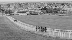 Thoroughbred Racing Newmarket Town England. Newmarket Town in England is the racehorse capital of the world for breeding and training, racing well over 350 years stock image