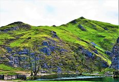 Thorpe Cloud och Dovedale kliva stenar, i Dovedale, Derbyshire royaltyfria bilder