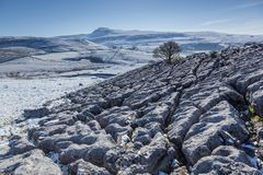 Thorton in Lonsdale, Yorkshire Dales, UK. 10th April 2016. Unsea. Sonal April snow falls on the Yorkshire Dales overnight. Limestone pavement near Twistleton Stock Photo