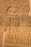Thoth standing Royalty Free Stock Image