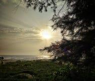 Thottam,印度 库存图片