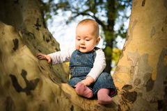 Thoughful baby on tree Stock Images