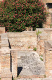 Mosaics in Ostia Antica, Italy Stock Images