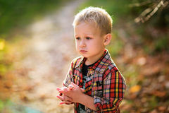 Thoughtful baby boy frustrated summer autumn Royalty Free Stock Photography