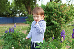 Thoughtful baby standing against flowers Royalty Free Stock Image