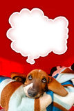 Thoughtful Basset Hound. Puppy inside his dog house with a think bubble above his head royalty free stock photos