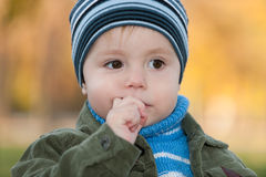 Thoughtful boy at autumn background Stock Images