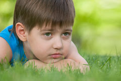Thoughtful boy on the green grass Stock Images