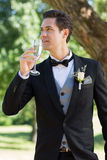 Thoughtful bridegroom drinking champagne Stock Images