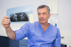 Thoughtful dentist studying x-ray attentively Royalty Free Stock Photography