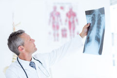 Thoughtful doctor holding xray Stock Images