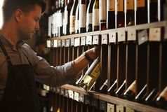 Thoughtful expert in winemaking on background of shelves with wine. Stock Photos