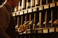 Thoughtful expert in winemaking on background of shelves with wine. Stock Photo