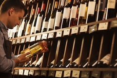 Thoughtful expert in winemaking on background of shelves with wine. Stock Image