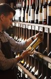 Thoughtful expert in winemaking on background of shelves with wine. Young sommelier holding bottle of wine in cellar, reading information on sticker about stock photos