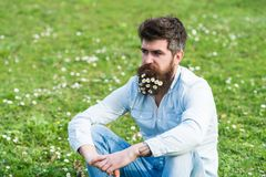 Thoughtful handsome man with tiny white petals in his beard sitting on green grass field. Hipster thinking about. Something outdoors, green meadow background Stock Photos