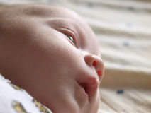 Thoughtful infant. Creative low angle closeup shot of a calm baby 3 months old, seemingly thinking of his own Royalty Free Stock Image