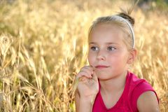 Thoughtful little girl dreaming in wheat field. Thoughtful cute little blond girl sitting in a wheat field  in day sunlight Royalty Free Stock Image