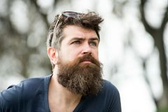 Free Thoughtful Man With Blue Eyes Looking Into The Sky, Tranquility And Mindfulness Concept. Young Bearded Hipster With Stock Image - 116626481