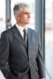 Thoughtful mature businessman Stock Photography