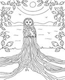 Thoughtful owl sitting on the stump river is in the background with frame made of branches with leaves. Coloring book Royalty Free Stock Photo
