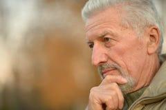 Thoughtful senior man  in  park Stock Image