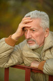 Thoughtful senior man  in  park Royalty Free Stock Images