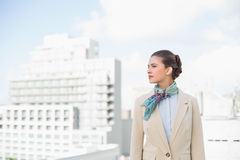 Thoughtful smart brown haired businesswoman looking away Royalty Free Stock Photography