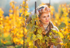 Thoughtful woman standing in autumn vineyard Royalty Free Stock Photos