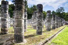Thousand colums. One of the mayan ruins conserved in the Chichen-itza park Royalty Free Stock Image