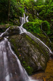 Thousand Drips, Roaring fork, Great Smoky Mountains. This cascading tributary to the Roaring Fork River can be seen along the Roaring Fork Motor Nature Trail in Stock Image