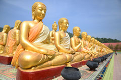 Thousand of Golden Buddha statues Stock Images