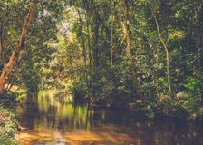 Thousand lingas river. Siem Reap. Cambodia Stock Photos