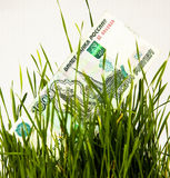 Thousand rubles a green grass growing income white background Royalty Free Stock Image