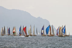 Thousand Sails 2010 Royalty Free Stock Images