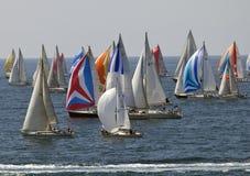 Thousand Sails 2010 stock photography