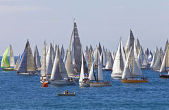 Thousand Sails 2010 Royalty Free Stock Image