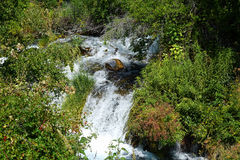 Thousand Springs - Idaho. Thousand Springs includes many waterfalls which emerge in Idaho`s Snake River Canyon near Hagerman Stock Photography