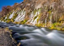 Thousand springs Idaho mini waterfalls Royalty Free Stock Photography