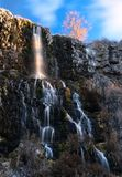 Thousand Springs Waterfalls in sunrise in spring. Thousand Springs State Park. Boise. Idaho. The United States of America royalty free stock photos
