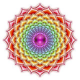 Thousandfold ανθίζοντας Lotus Απεικόνιση αποθεμάτων