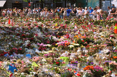 Thousands of flowers in Oslo, one week after June 2011 attack Royalty Free Stock Photo