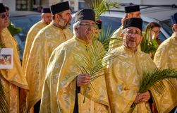 Thousands of Orthodox priests on the street celebrate Orthodox Palm Sunday in Romania. Thousands of Orthodox priests on the street holding palm fronds and stock photography