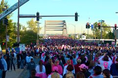 Thousands at Race For The Cure. Race for the Cure in Little Rock, Arkansas on October 20, 2012 Royalty Free Stock Image