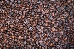 Thousands roasted coffee beans stock photo