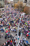 Thousands of Runners Lining up for the Drumstick Dash, Roanoke, Virginia, USA Stock Image