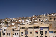 Thousands of satellite dishes. In Fez against blue sky, Morocco stock photography